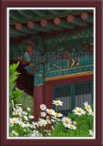 Saeshimsa Buddhist Temple 세심사 - Korea