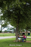 rest under a shade tree