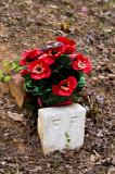 Tiny Grave