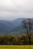 Tennessee Images