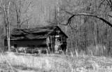 Old barn in Lineville Alabama USA