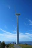 31 August 07 - Brooklyn Windmill
