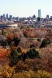 Mt. Auburn Cemetery and Boston Skyline II