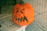 Unfriendly Pumpkin