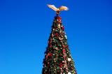 Christmas Tree at Viejas 1