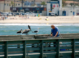 Summertime on the Pier