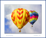 Colorful Balloons_244