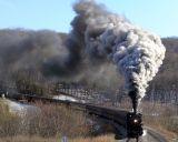 TRAINS/RAILROAD PHOTOS/AMTRAK