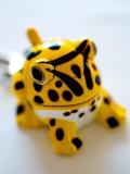 2006-12-13 Ugly frog