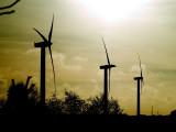 2007-01-13 Wind energy