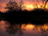 2007-02-08 Orange reflection
