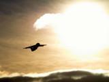 Flying into light