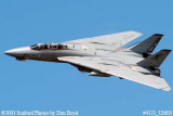 USN F-14 Tomcat from VF-101 Grim Reapers military aviation air show stock photo #4121
