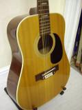 12-String (Steve)