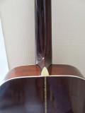 12-string Neck and Back (Steve)