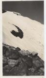 Upper Portion Of Avalanche (Baker1939-5.jpg)