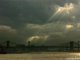 Ray of New York Light