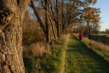 Path along the Miami-Erie canal