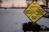 No Diving?  No Kidding!