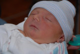Camen at 36 hours old