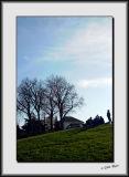 Autumn Silhouette_DS26222.jpg