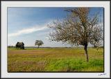 Loire Farmland in Autumn_DS26521.jpg