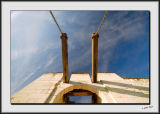 Looking Up_DS26226.jpg