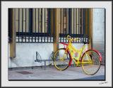 Technicolour Bicycle_DS26268.jpg