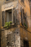 3201 - Verona - Decay.jpg