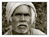 Bhavo - India