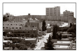 Ayda Camp and Occupation