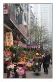 The Chongqing Bodyswing
