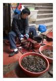 Skinning Eels