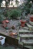 Ragwort Court - Garden
