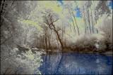 Rosemere river