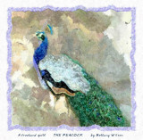the Peacock quilt