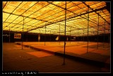 Worship Tents, Imam Mosque