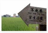 Further Direction ¦A¤Þ¸ô