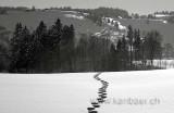 Schnee / Snow (2569)