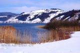 Winter (0988)