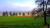Hochmoor (8290)