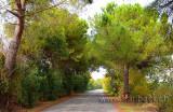 Abruzzo (0763)