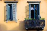 Fenster / Windows (00054)