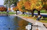 Herbst am Aegerisee (7047)