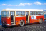 Bus (30)
