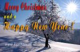 Season's Greetings (8469-2)