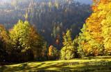 Herbst (7383)