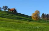 Herbst (61329)