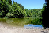 Waldweiher (75794)