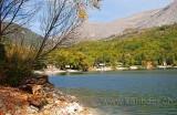 See / Lake (0646)